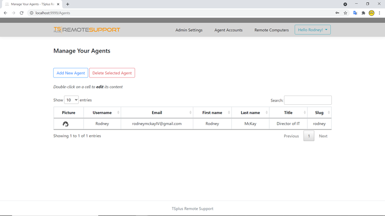 web console agents